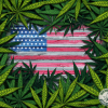 Cannabis leaves surrounding a US flag