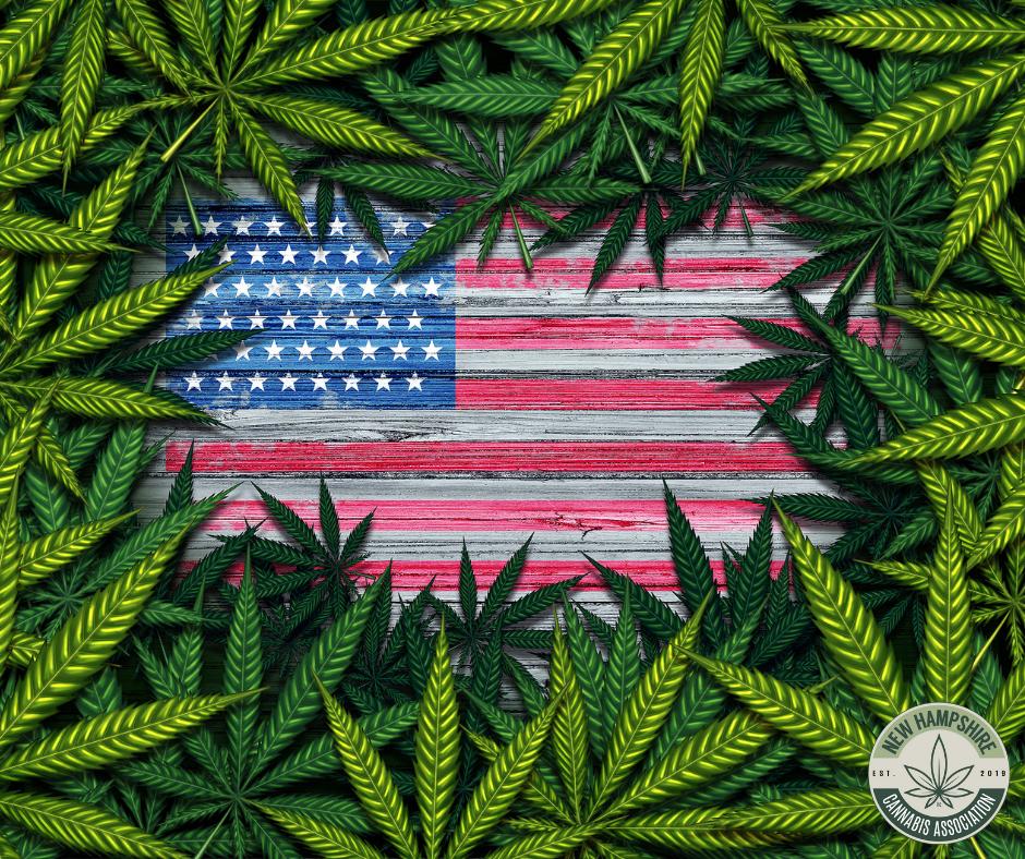 Cannabis leaves surrounding a US flag